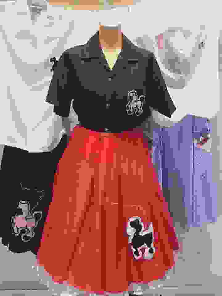 50'S POODLE SKIRTS